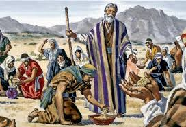 The Israelites in the wilderness