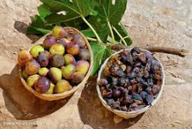 Jeremiah's Vision of Figs