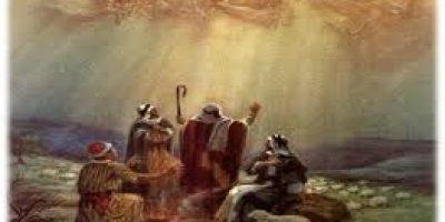 Shepherds Receive Good News-1